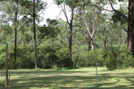 Bushland